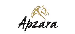 Productions Apzara logo